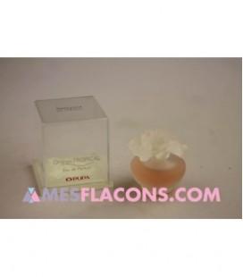 Bouquet de Parfum - Orange tropical